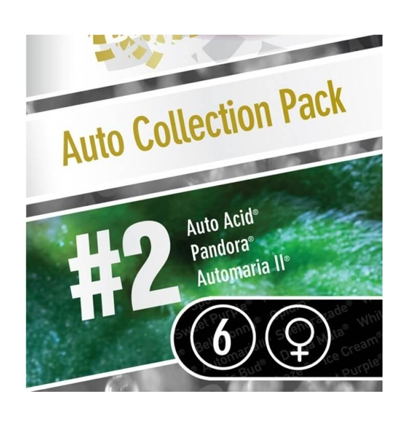 AUTO COLLECTION PACK #2  PARADISE SEEDS 6UN