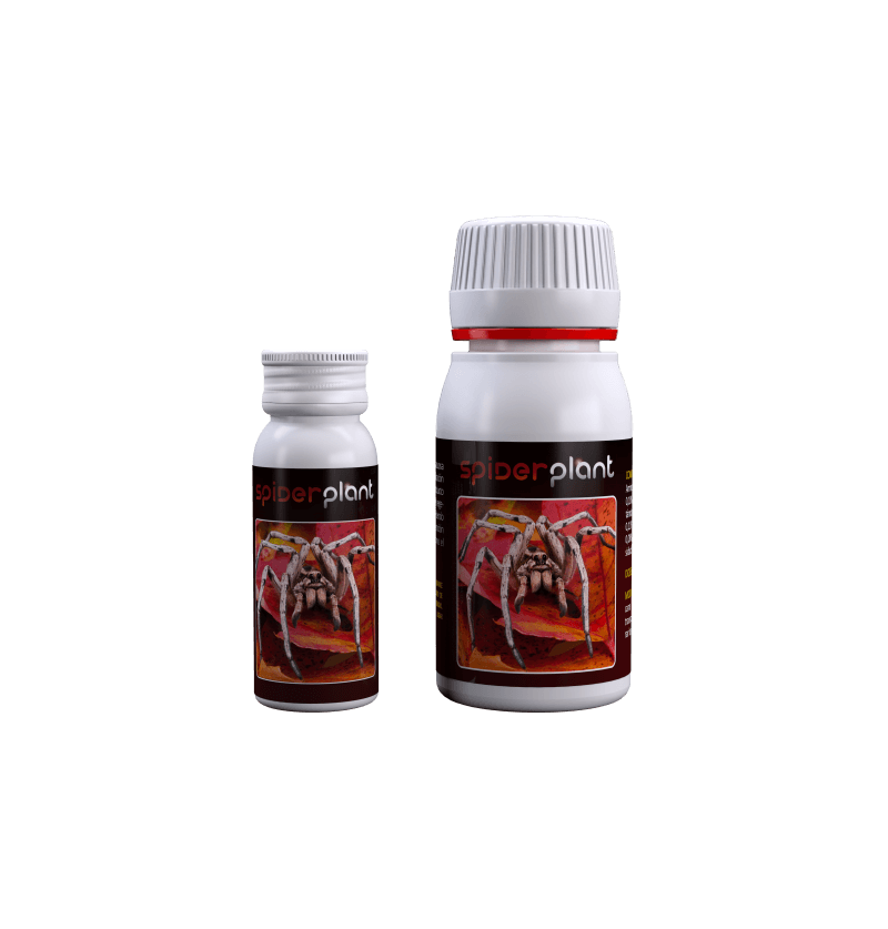 SPIDER PLANT AGROBACTERIAS 60ML